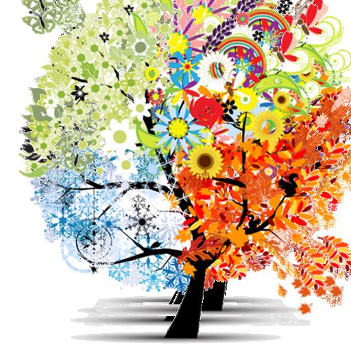 Psychotherapeutische Praxis - Sabine Lackner